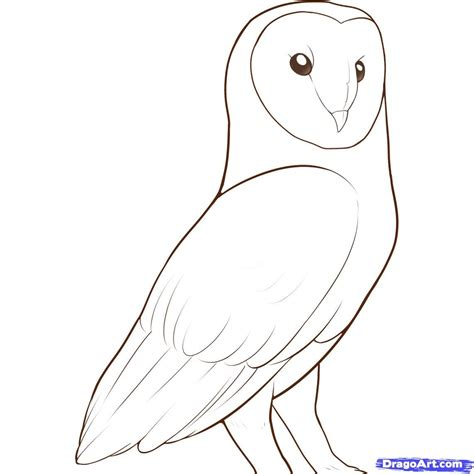 Sketches To Trace by How To Draw A Owl Step By Step I Did This With