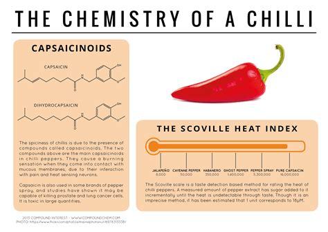 food chemistry infographic homeschooling  detroit