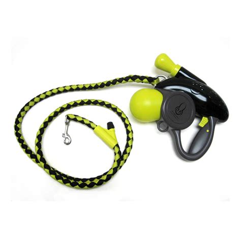 puppy leash age misting leash