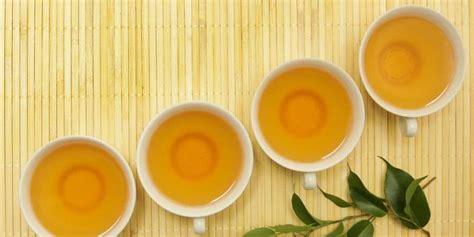 Teh Jenggot manfaat teh hijau untuk kesehatan dan obat herbal informasi untuk sobat
