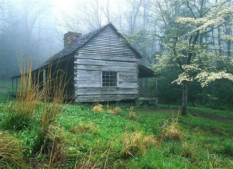 Cabins Smoky Mountains Tennessee by Peaceful Morning Noah Ogle S Log Cabin Smoky Mountains Tennessee State Pixdaus