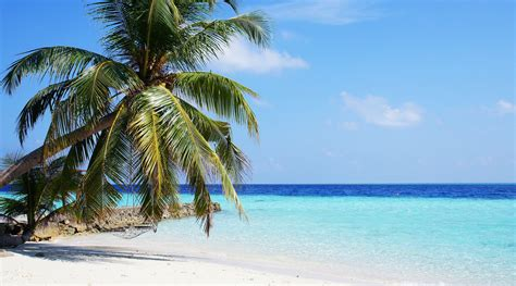 maldives best beaches thursday pic of the week those maldives beaches