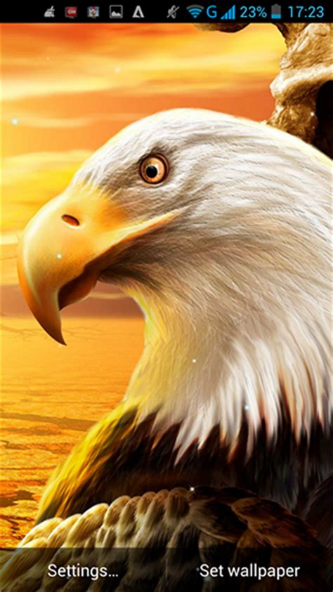 Burung Elang 3d descargar eagle para android gratis el fondo de pantalla