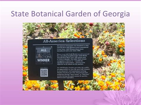 Botanical Garden Information Botanical Garden Information Wonderful Botanical Gardens