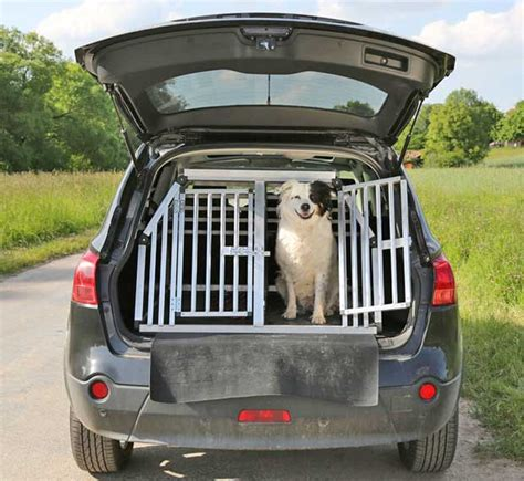 Kinder Im Auto Transportieren by Wie Transportiert Man Hunde Sicher Im Auto Tier Tv