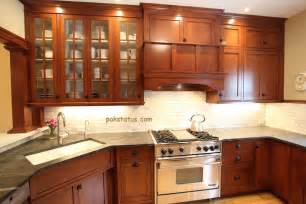 small kitchen cabinets design ideas cabinet designs photo gallery