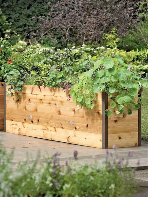 Hochbeet Als Sichtschutz Bepflanzen by Die Besten 25 Hochbeet Bef 252 Llen Ideen Auf