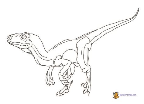 Velociraptor Coloring Page Coloring Home Velociraptor Coloring Page