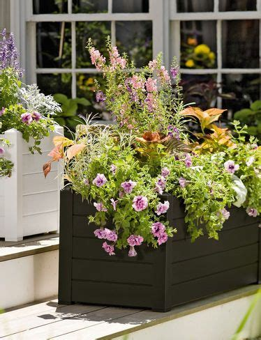 Self Watering Trough Planter by 25 Best Ideas About Trough Planters On Bamboo