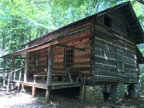 Foxfire Cabin by Later Cabin Picture Of Foxfire Museum Mountain City