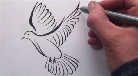 tribal dove tattoo how to draw a tribal dove design