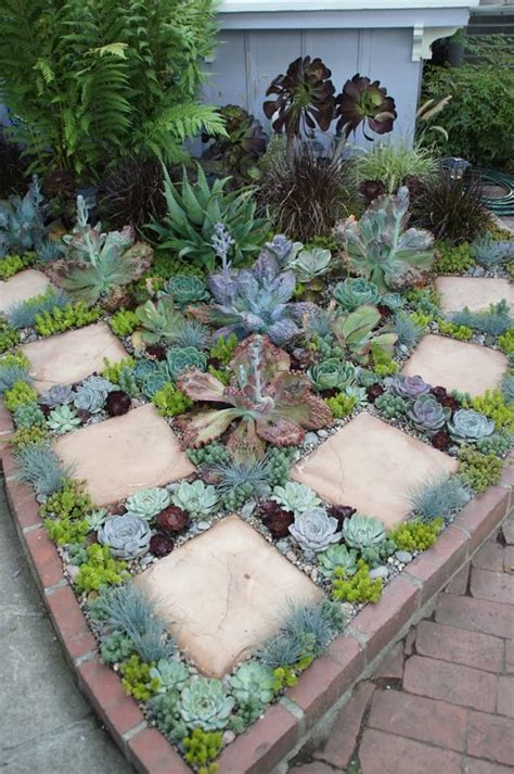 the 25 best ideas about succulent landscaping on