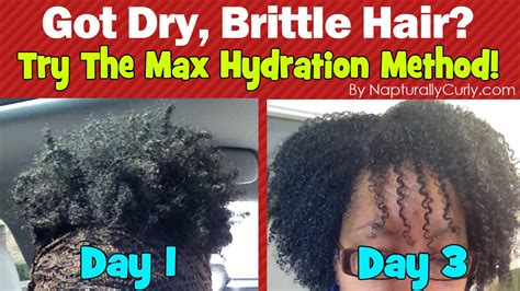 the max hydration method is it for you the mane max hydration method results after 3 days wash and go