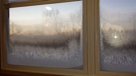 what causes condensation on house windows window replacement part 1 the dog and pony show comes to your house