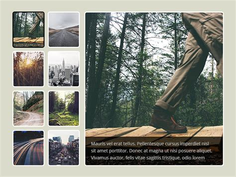 muse themes gallery 25 free muse templates creative website themes and