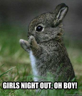 Girls Night Meme - girls night out oh boy cute bunny quickmeme