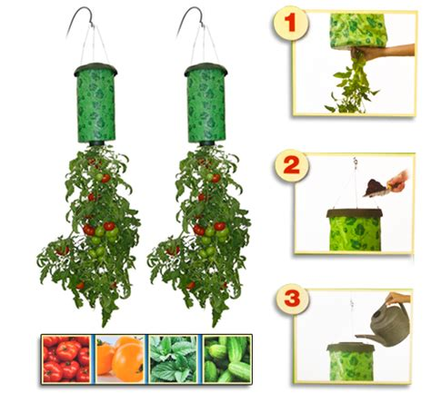 Where To Buy Topsy Turvy Tomato Planter by Topsy Turvy Tomato Planter 9 98 Shipped From