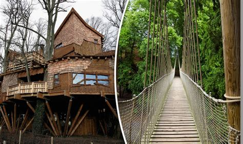treehouse wedding venue fancy getting hitched in a cave 14 alternative wedding