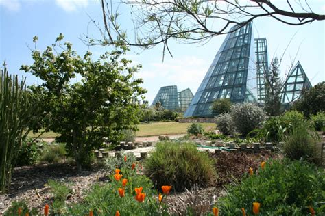 San Antonio Botanical Gardens San Antonio Botanical Garden Set To Expand The Daily