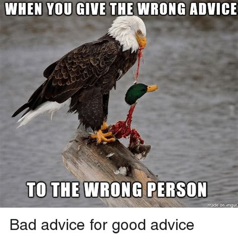 25 best memes about advice advice animals and bad