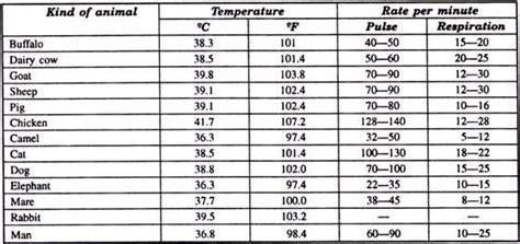 normal temperature for a normal temperature