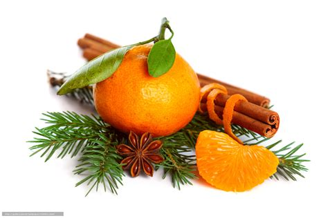 christmas trees that smell like orange wallpaper mandarin citrus spruce branch free desktop wallpaper in the resolution