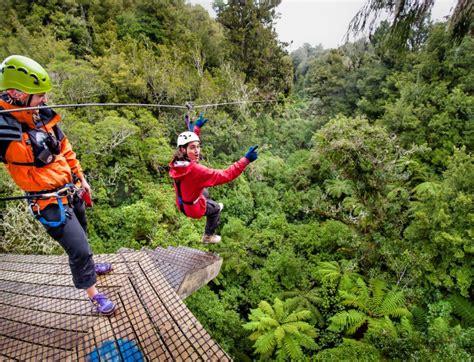 canapé tours zealand forest zipline canopy tour rotorua