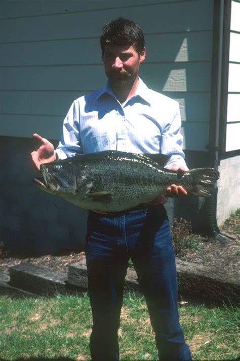 Virginia Records Virginia State Record Fish Vdgif