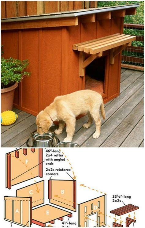 Small Home Pet Dogs 17 Best Ideas About House Plans On