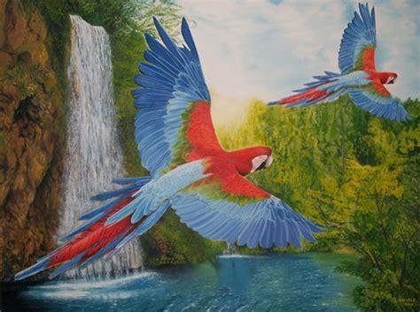 ver imagenes figurativas realistas harold obra pintura figurativa realista quot guacamaya del