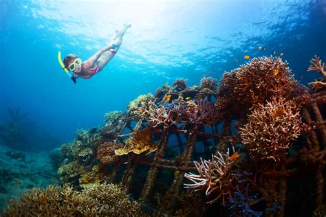 dive places the best places for snorkeling in bali