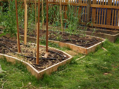 ideas for garden beds vertical gardens and intensive