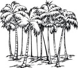 palm tree coloring page tree coloring pages