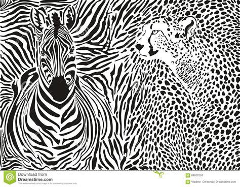 pattern zebra illustrator zebra and cheetah and pattern background stock vector