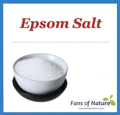 Epsom Salt Foot Detox Lyme by Epsom Salt Fans Of Nature