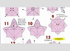 Related Keywords Suggestions For Origami Lotus Directions
