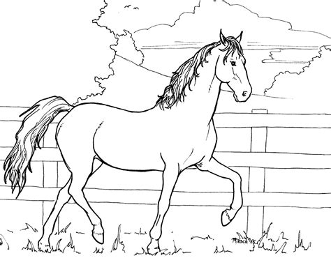 coloring pictures of a horse horse for colouring 2005 by mambolica on deviantart
