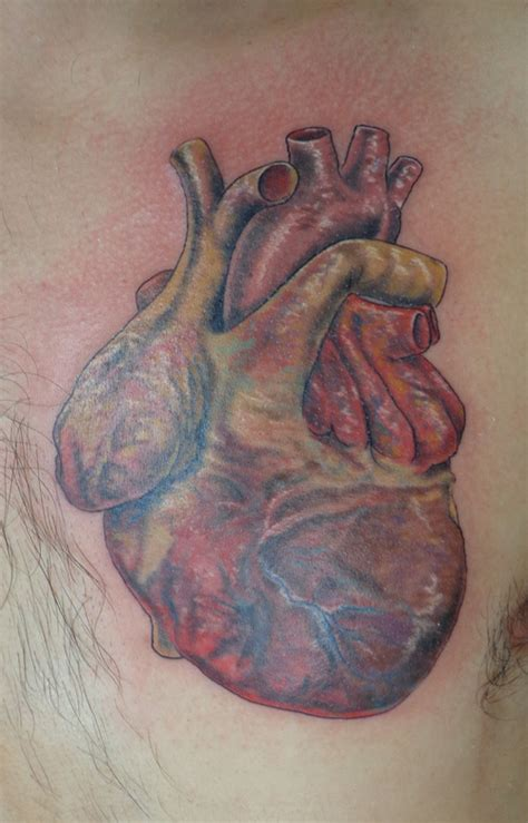human heart tattoo design human designs images