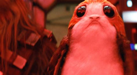 wars the last jedi chewie and the porgs books this week in meet the porgs from the last jedi