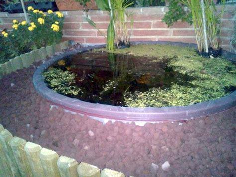 laghetti giardino offerte laghetto da giardino tutte le offerte cascare a fagiolo