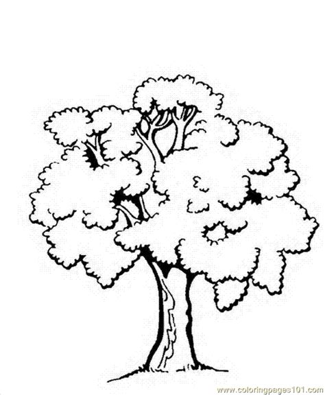tree to color trees to color az coloring pages