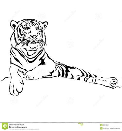 Black And White Vector Sketch Of A Tiger S Face Cartoon Vector Cartoondealer Com 55175925 Vector Image Black White Sketch
