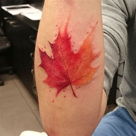 leaves tattoo 25 best ideas about maple leaf tattoos on