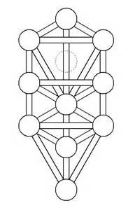 file tree of life kircher plain png wikimedia commons