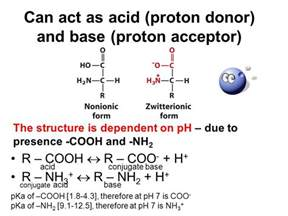 Acid Proton Amino Acids As Hoteric Compounds Ppt