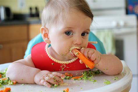 Celemek Makan Anak Baby Toddler Kecil Eat Food Masak Bib Animal 7 manfaat baby led weaning bagi si kecil blibli friends