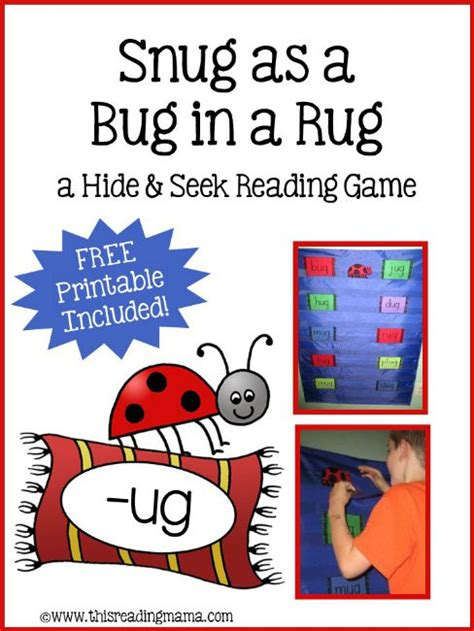 snug as a bug in a rug a hide and seek reading