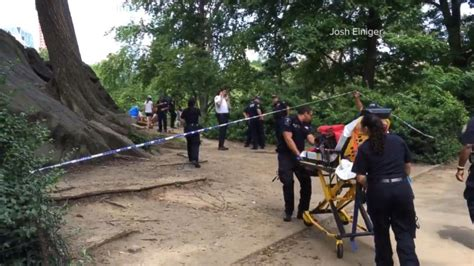 Baut Jt 5 X 16 explosive that injured in new york s central park likely an experiment cops say abc news