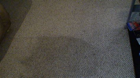 Las Vegas Upholstery Cleaning by Las Vegas Carpet And Tile Cleaning High Traffic Carpet Clean
