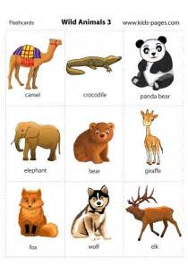 animal pictures for toddlers animals 3 flashcard